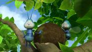 Flies (Maya the Bee)