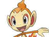 Chimchar (Character)