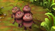 Little Firebugs (MTB)