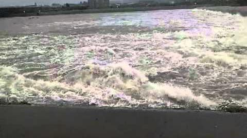 落差工を流れる洪水流(下流から)@桂川 20110904台風12号