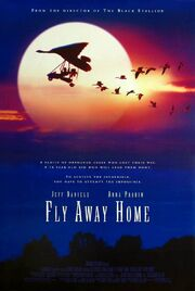 1996 - Fly Away Home