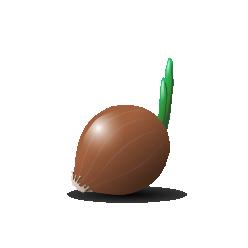 Onion joerg rosenbauer