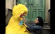 Big Bird upset over those Cuckoo birds and his nest