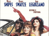 Opening To To Wong Foo Thanks For Everything Julie Newmar AMC Theaters (1995)