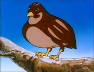 Sweetie the Bird (TAOMTB)