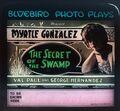 1916 - The Secret of the Swamp Lantern Slide.jpg