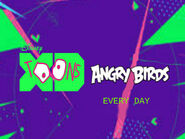 Disney XD Toons Angry Birds Promo Every Day 2017