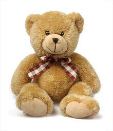 Teddybear20