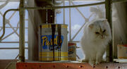 Stuart-little2-disneyscreencaps.com-6142