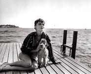 Audrey Hepburn during the filming of Sabrina, 1953.