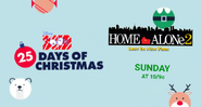 Disney XD Toons 25 Days of Christmas Home Alone 2 Lost in New York Promo 2019