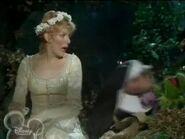 Sister Tuck Miss Piggy grabs Robin Hood Kermit away