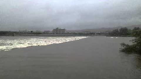 落差工を流れる洪水流(上流から)@桂川 20110904台風12号