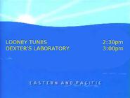 Toon Disney Looney Tunes To Dexters Laboratory