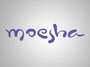 Moesha Title Card