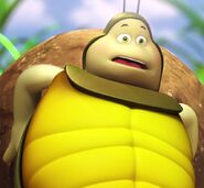 Kurt the Dung-Beetle (Maya the Bee Movie)