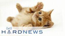 HardNewsJan15th2014