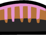 Muktuk