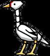 Crane Bird