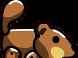 Beaver Pup