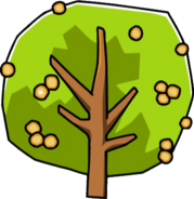 Mimosa Upper