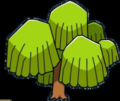 Willow Tree-0