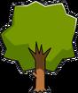 Acorn Tree