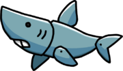 Shark Pup