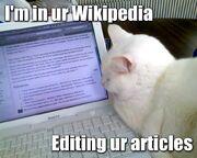Wikipedia-lolcat2