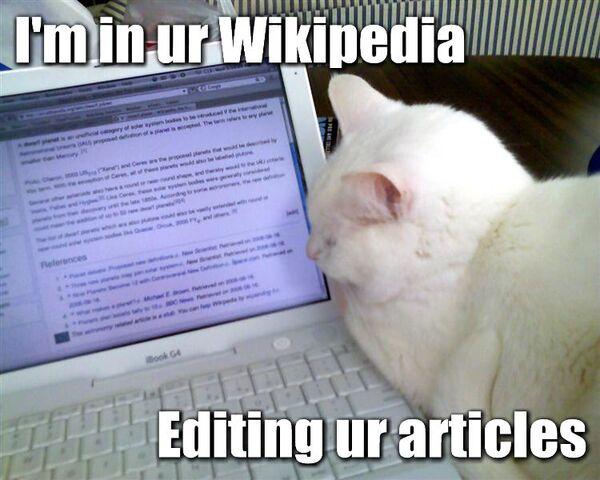 File:Wikipedia-lolcat2.jpg