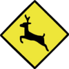 Deer Caution Sign
