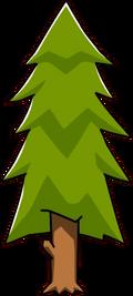 Pine Tree-0