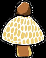 Stinkhorn