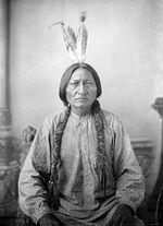 Sitting Bull by D F Barry ca 1883 Dakota Territory