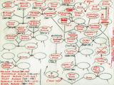 Don Rosa's Duck Family Tree Sketch