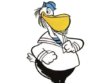 Papudo Duck