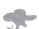 Mr Bird (Martha's Father)