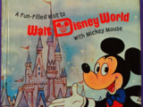 A Fun-Filled Visit to Walt Disney World with Mickey Mouse