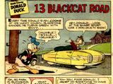 13 Blackcat Road