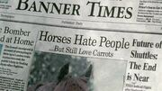 9x7 Horses Hate People