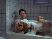 2x10 JD bathes Rowdy