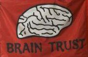 Brain Trust Flag