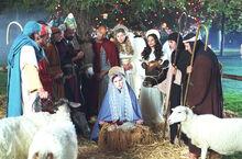 Mein Weihnachtswunder