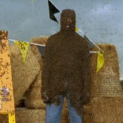 Turk covered in bees