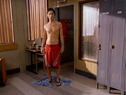 3x14 Shower Shortz