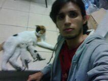 Jose rafael cordero sanchez gatos (2)