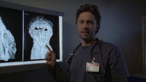 8x5 Ex-Ray x-ray