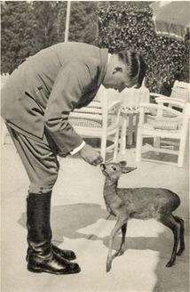 File:Vile Deer.jpg