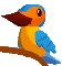 File:ParrotIcon.png