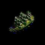 Green Saint